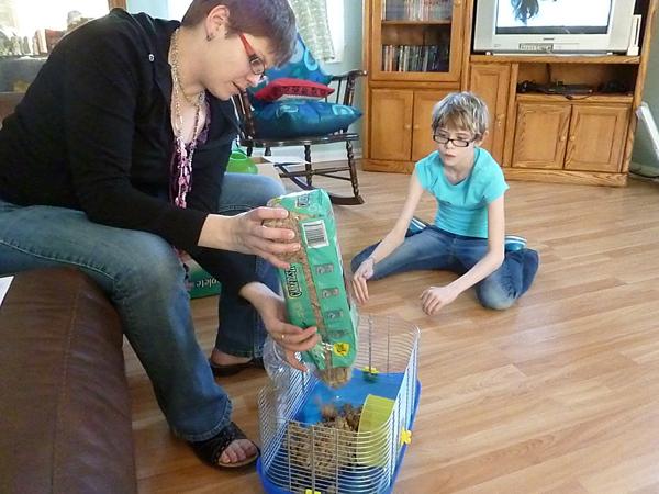 Putting a hamster habitat together