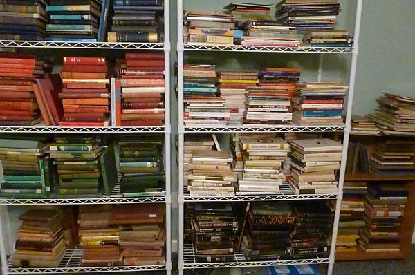 Bookshelf in homeschoolers' basement