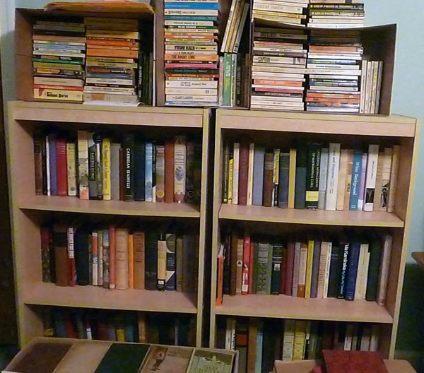 Bookshelf in homeschoolers' basement