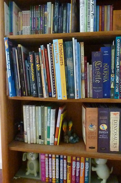 Homeschoolers' bookshelf in hallway