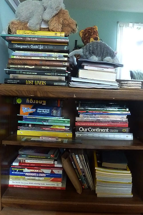 Bookshelf in homeschoolers' living room