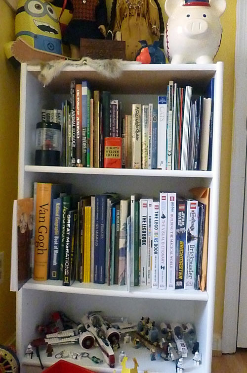 Homeschoolers' bookshelf in teenage daughter's bedroom
