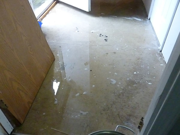 Washer overflowed and flooded basement