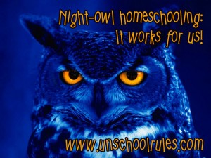 Unschooling 8th grade on Unschool Rules: How to homeschool at night