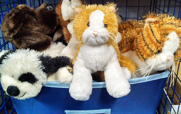 10 toys that last into the teen years, including Webkinz