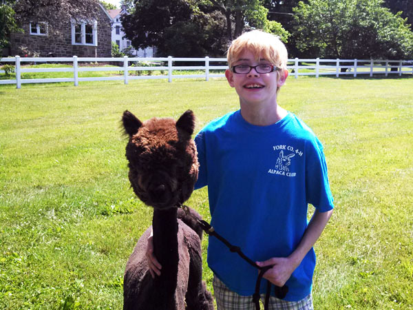 Sarah and Gia at 4-H alpaca show