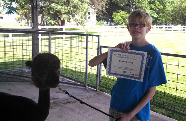 Sarah and Gia with their certificate at a 4-H alpaca agility show