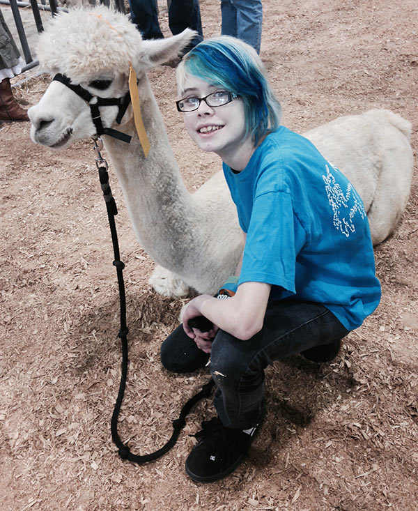 Our biggest project this month was the 4-H alpaca show at the York Fair. Here are Ashar and Jupiter.