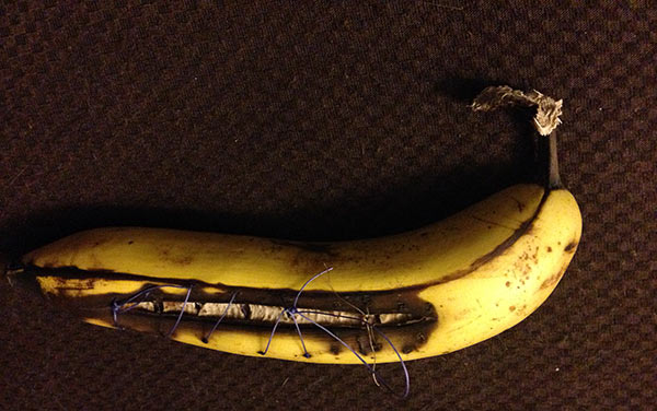 An interlude in the long list of movies and TV shows: This banana, which Sarah learned how to do sutures on at Penn State's Pre-Vet Symposium. They got to keep the banana. Sarah loved it, despite having a hard time getting started as a left-hander being instructed by right-handers, which of course is the story of my life.