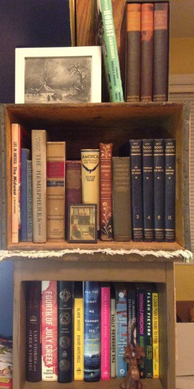 Unschool Rules bookshelves of an unschooling family