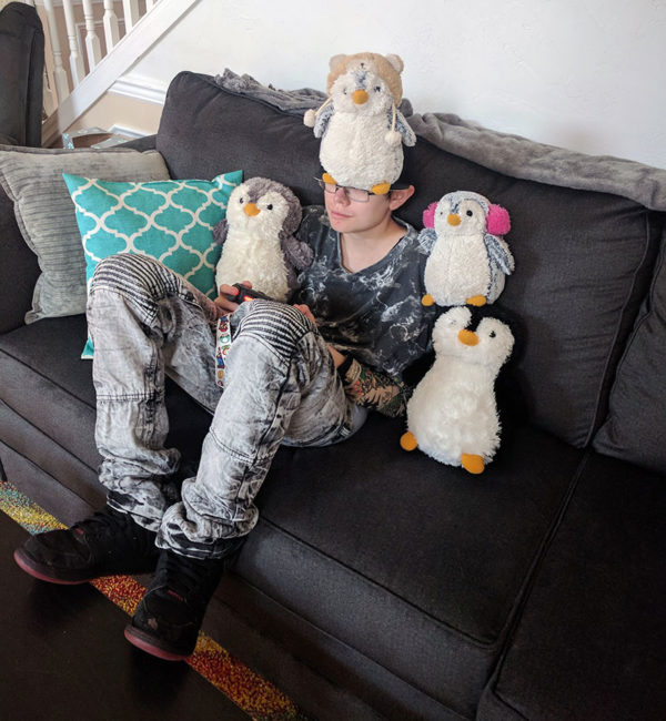 Unschooling in August 2017 on Unschool Rules; Doesn't everyone balance penguins upon themselves while sitting on the couch?