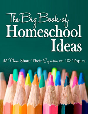 The Big Book of Homeschool Ideas Volume 1